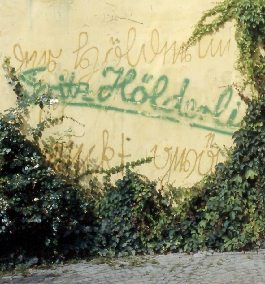 """""""…bald sind wir aber Gesang"""" – eine erweiterte Rezension zu Rüdiger Safranskis Hölderlin-Biographie (Teil 2)"""